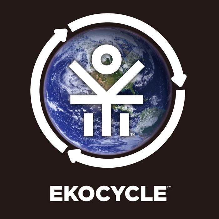 Tern-VERGE-P9-EKO-2017-ekocycle1.jpg
